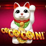 Coin Coin Coin CNY